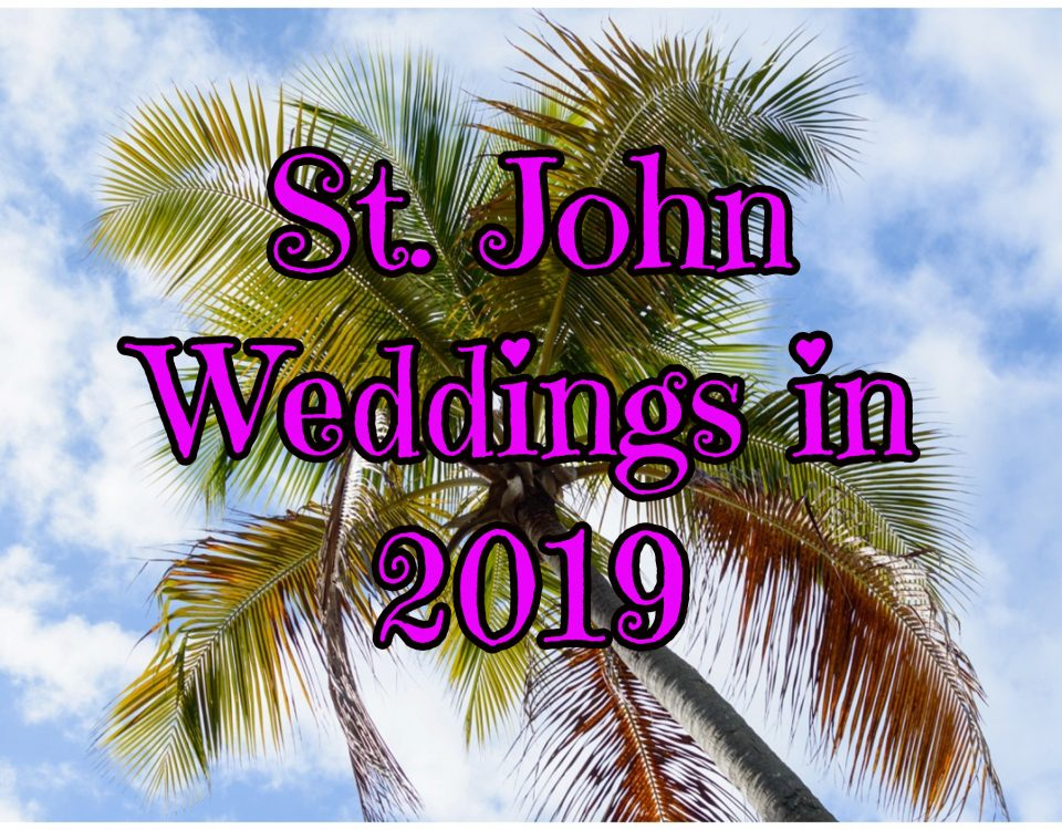 palm tree with st john weddings in 2019